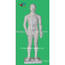 Human Acupuncture Model 70cm with 361 points,Acupuncture Human Model