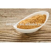 Kostenlose Probe Austernpilz-Extrakt / Austernextrakt Pulver / Polysaccharid