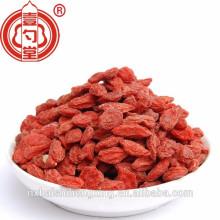 Lycii fructus, Gouqi zi / Ningxia Goji wolfberry Bayas de Goji de calidad premium seca / Boxthorn / Salud seca Chinese Wolfberry nutrition