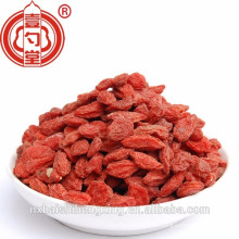 Lycii fructus, Gouqi zi / Ningxia Goji wolfberry Grau Premium Secas Goji berries / Boxthorn / Saúde Seca Chinês Wolfberry nutrição