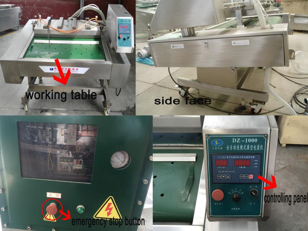 Mainly Marketed Continuous Type Vacuum Packing Machine