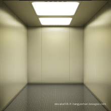 Ascenseur de cargaison bon marché