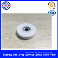 White Plastic Coated Deep Groove Ball Bearing (BSU 10X45X21mm)