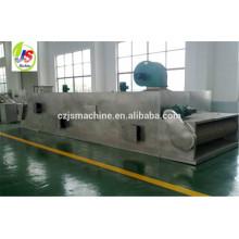 Serie DWT transportador de malla secador de vegetales máquina