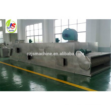 DWT Series conveyor mesh vegetable dryer machine