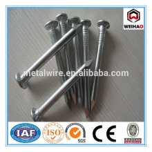 ISO 9001 Good quality galvanized concrete steel nails supplier
