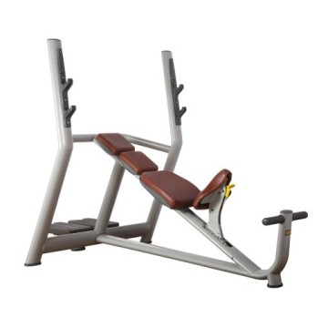 Peralatan Fitness Gym Profesional Incline Bench
