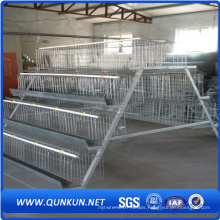 Hot Sale Layer Egg Chicken Cage