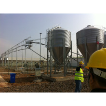 Feeding Silo for Chicken Raising