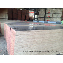 Combind Core Film Faced Plywood 610*2500*20mm
