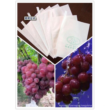Weather-Resistant Non-Toxic Guava/Grape/Mango Protection Paper Bag Factory Price with Outlet Entrance
