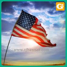 Piquets de drapeau debout libre jetables adaptés aux besoins du client de logo