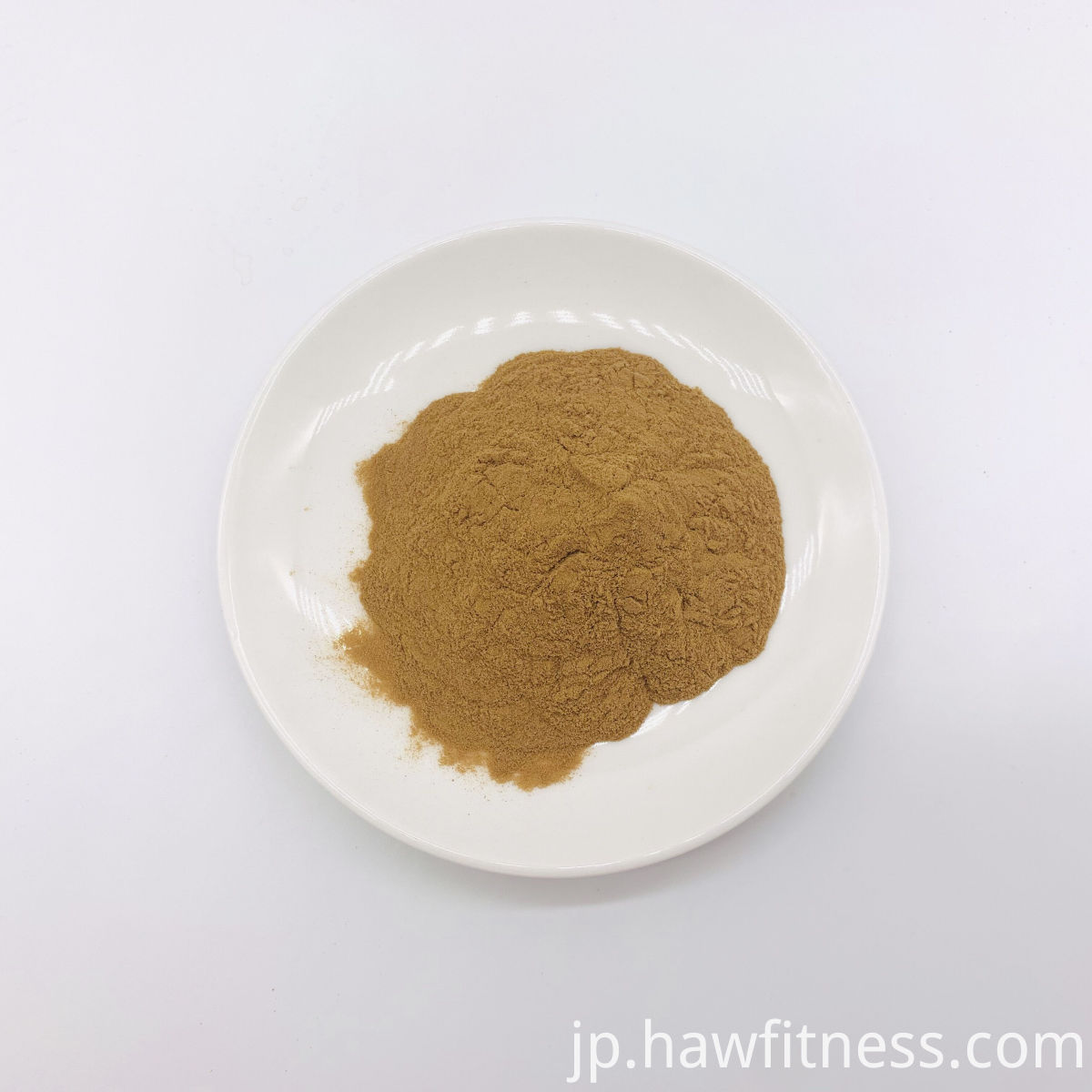 Galangal Extract Powder