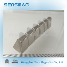 Customized Special Shape Permanent NdFeB Magnet for Generator
