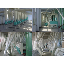 150ton Mill for Grinding Wheat (6FTF)