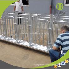 2018 équipement de ferme de cochon pour truies gestation caisse truies stalle
