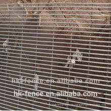 Anti-kletternde Zaun benutzt für Sicherheit der Yard gardon Schule oder der öffentlichen Plätze