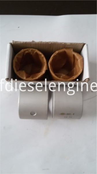 TBD234 Connecting Rod Bushing (2)