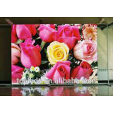 High quality pixel pitch 6mm indoor led display for conference