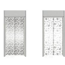 Fjzy-Elevator (FJ8000-1) Elevador Pasajero Fjzy-221