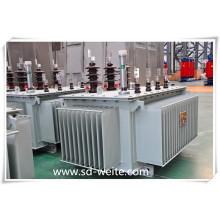 10kv Transformador De Energía De Distribución Manufacturado Con Certificado IEC