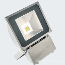 Taiwan Epistar LED 30W LED Floodlight LED Light