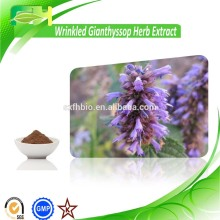 Pure Natural Pogostemonis Extract, Agastache Rugosa Extract Powder, Wrinkled Gianthyssop Herb Extract