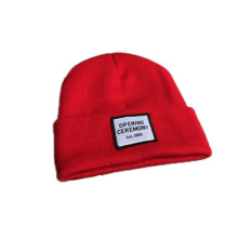Fashion Winter Custom Logo Beanie