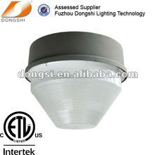 Workshop canopy ceiling light