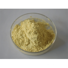 Oat Extract High Quality
