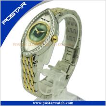 Montre-bracelet unique de dames avec le cadeau spécial Psd-2581 de petite amie de cadran