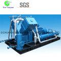 Biogaz Type de véhicule Compresseur de remplissage de cylindre pour station de ravitaillement au biogaz