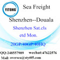 Shenzhen Port Sea Freight Shipping ke Douala