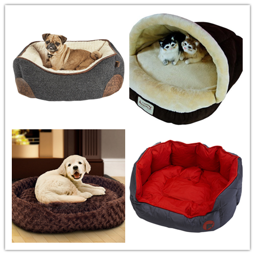 dog bed 10
