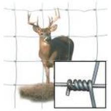 Cerf de barrière de bovins & treillis métallique