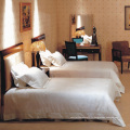 Ensemble d'un lit à deux lits moderne (EMT-B0901)