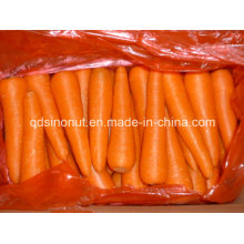 Neue Karotte (80-150G)