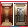 Green Environment Protection Home Elevator Lift with Machine Roomless