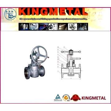 Conexión Válvula de tapón de elevación