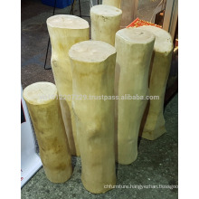 WHITE KING OF WOOD / RAJA KAYU (AGATHIS ALBA)