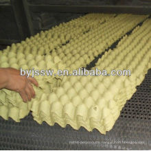 Cheap Egg Tray Price From Factory