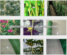 Plastic PP anti insect net machinery