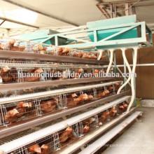 Chine fournisseur cage de volaille de type échelle / A type couche cage de volaille