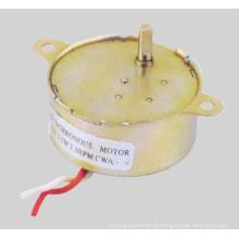 Синхронный двигатель переменного тока (49TDY-E)