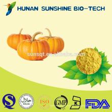 100% natürliches Fruchtgemüsepulver / Kürbispulver