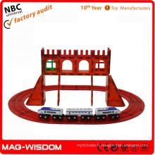Playmags Nouveau bloc magnétique 3D Toys 50pcs Sets