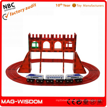 Playmags New Magnetic Building Block 3D Toys 50pcs Sets