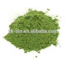 Hot sale Organic Alfalfa powder