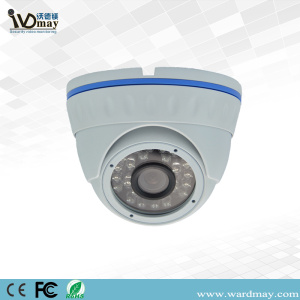 CCTV 2.0MP Motion Detect IR Dome IP Camera