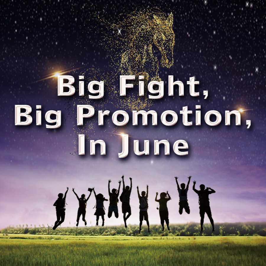 Big Promotion in June